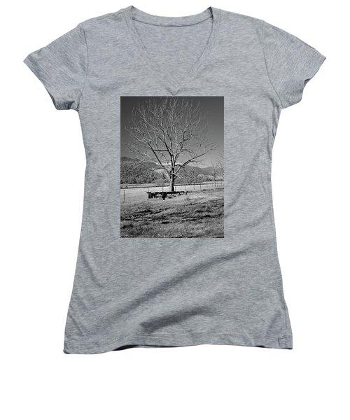 A Wintery Stand Women's V-Neck T-Shirt