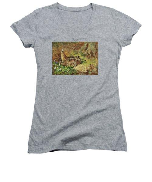 A Woodcock And Chicks Women's V-Neck T-Shirt