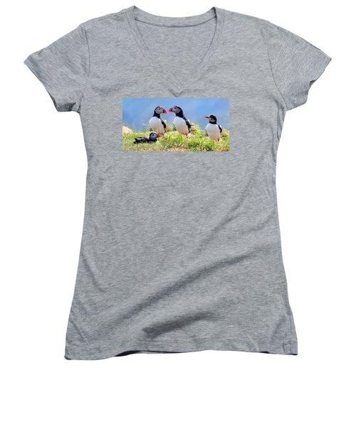 A World Of Puffins Women's V-Neck T-Shirt (Junior Cut)