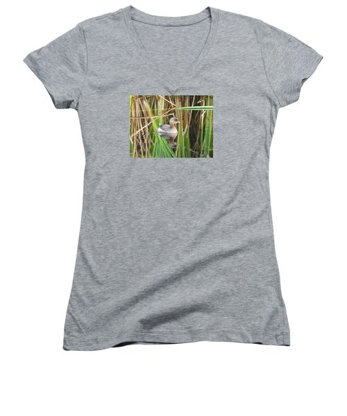 A Young Pied-billed Grebe And Its Reflection Women's V-Neck T-Shirt (Junior Cut) by Janice Adomeit