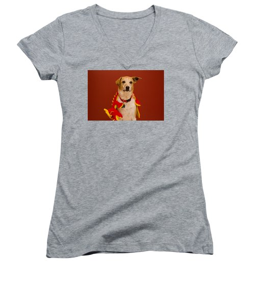 Abbie And Dragon Toy Women's V-Neck