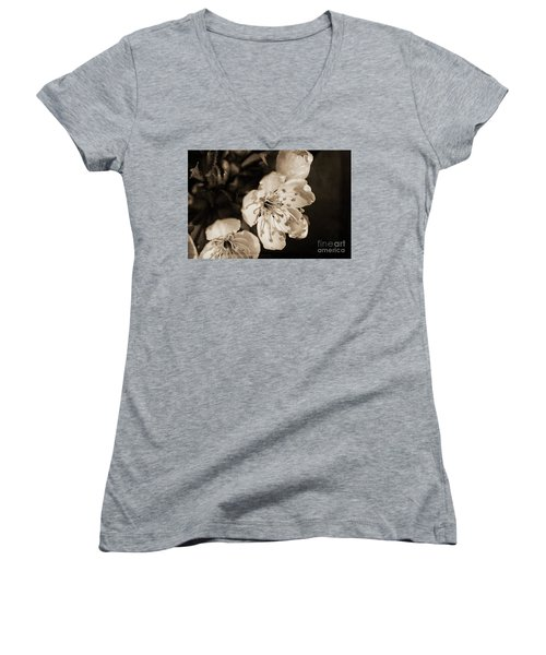 Women's V-Neck T-Shirt featuring the photograph Abiding Elegance by Linda Lees