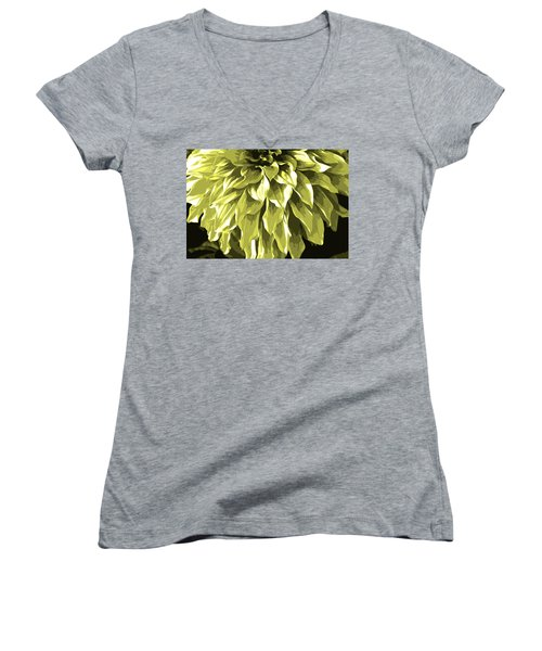 Abstract Flower 5 Women's V-Neck (Athletic Fit)