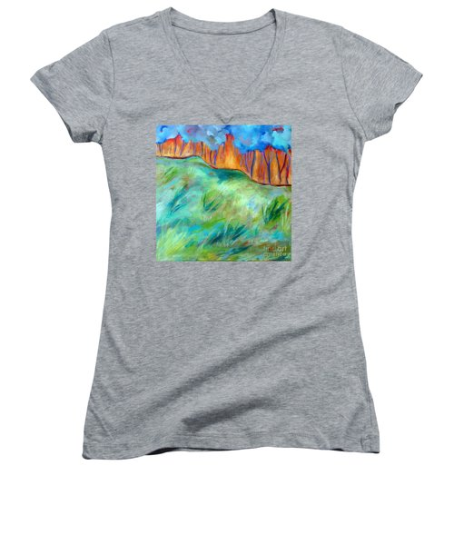 Across The Meadow Women's V-Neck T-Shirt (Junior Cut) by Elizabeth Fontaine-Barr