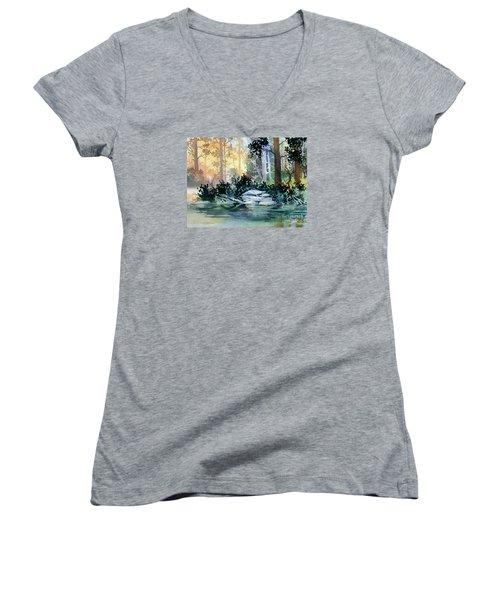 Admiralty Island Women's V-Neck T-Shirt (Junior Cut) by Teresa Ascone