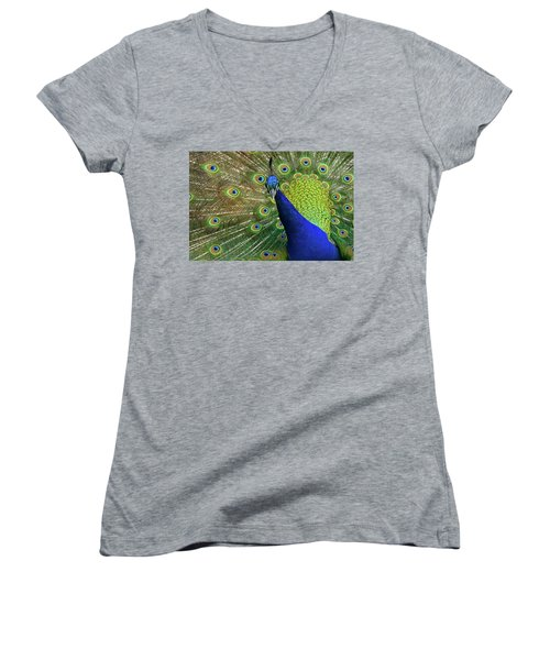 Admiration Women's V-Neck T-Shirt