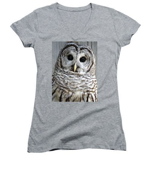 Adorable Barred Owl  Women's V-Neck T-Shirt