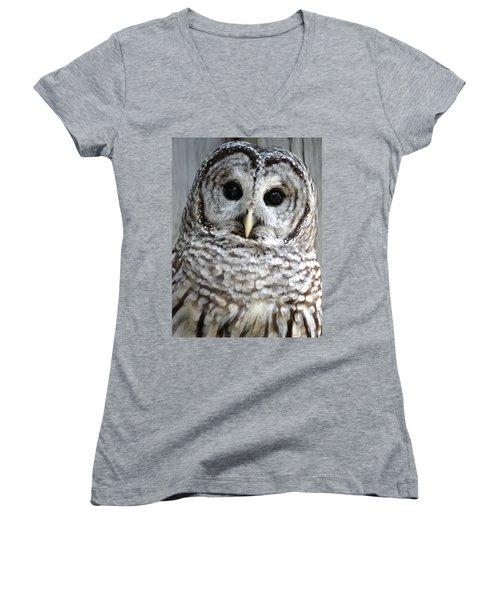 Adorable Barred Owl  Women's V-Neck (Athletic Fit)