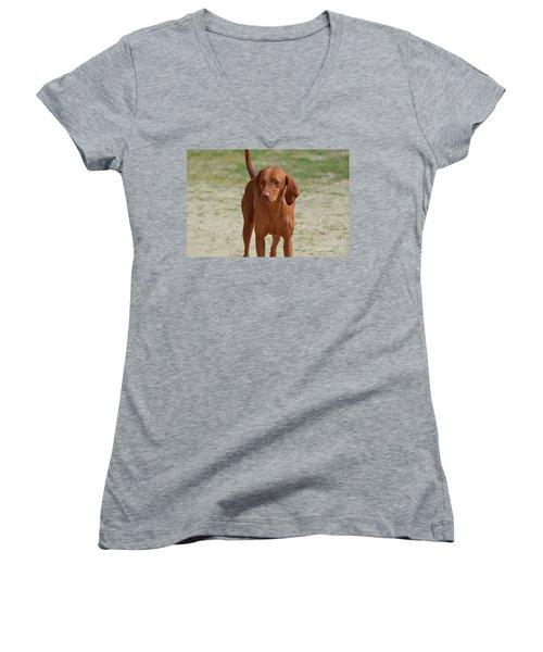 Adorable Redbone Coonhound Standing Alone Women's V-Neck T-Shirt (Junior Cut) by DejaVu Designs