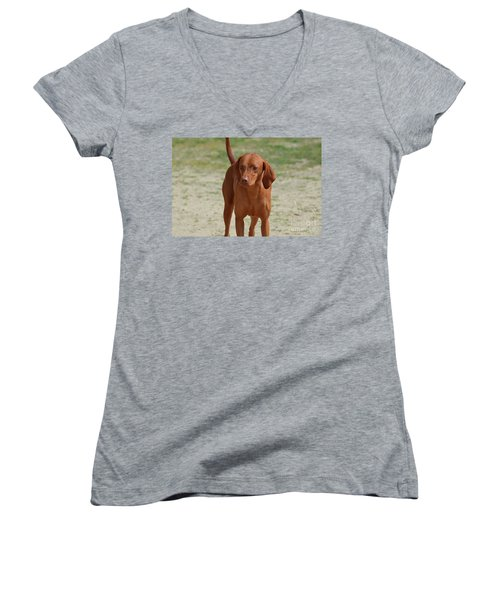 Adorable Redbone Coonhound Standing Alone Women's V-Neck (Athletic Fit)