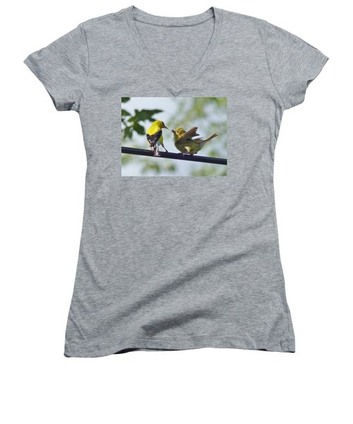 Adult And Juvenile American Goldfinch Women's V-Neck T-Shirt