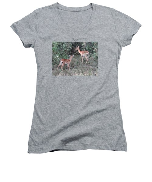 Africa - Animals In The Wild 2 Women's V-Neck T-Shirt