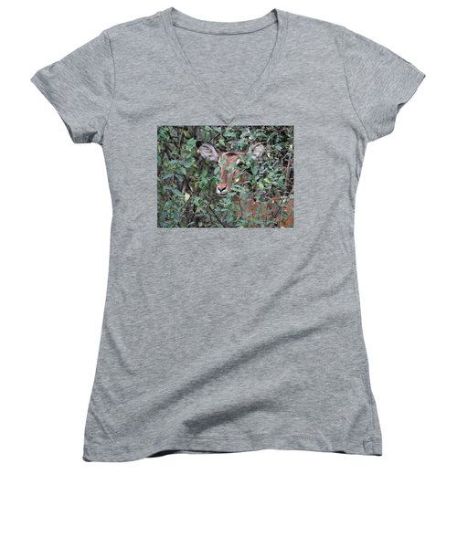 Africa - Animals In The Wild 4 Women's V-Neck (Athletic Fit)