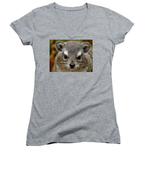 African Animals On Safari - A Child's View 6 Women's V-Neck T-Shirt