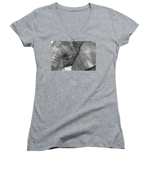 Women's V-Neck T-Shirt (Junior Cut) featuring the photograph African Elephant  by Kevin Blackburn
