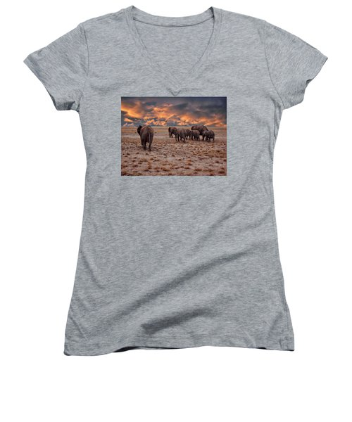 African Elephants Women's V-Neck