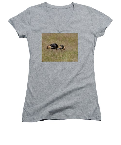 African Grey Crowned  Crane With Chick Women's V-Neck (Athletic Fit)