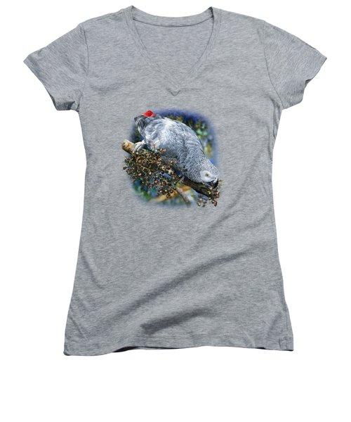 African Grey Parrot A1 Women's V-Neck T-Shirt (Junior Cut) by Owen Bell