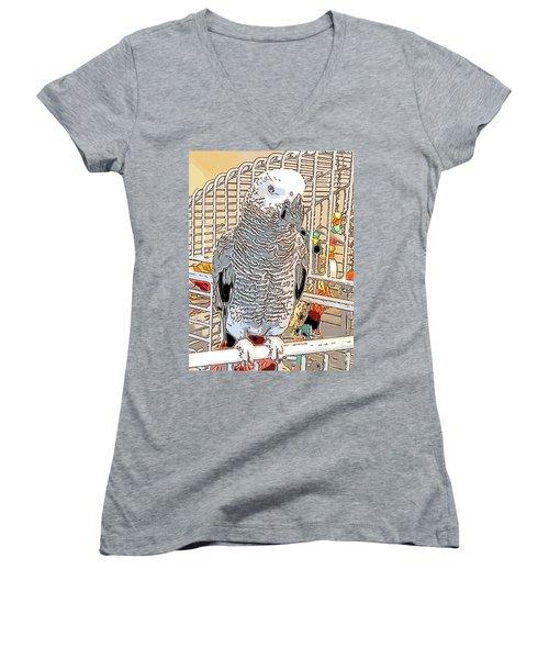 African Grey Parrot In Pencil Women's V-Neck