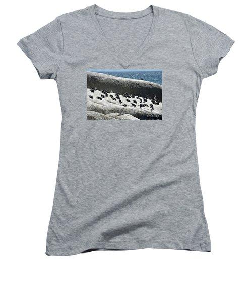 Women's V-Neck T-Shirt (Junior Cut) featuring the digital art African Penguin 4 by Eva Kaufman