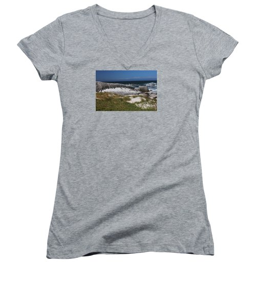 Women's V-Neck T-Shirt (Junior Cut) featuring the photograph African Penguins by Bev Conover