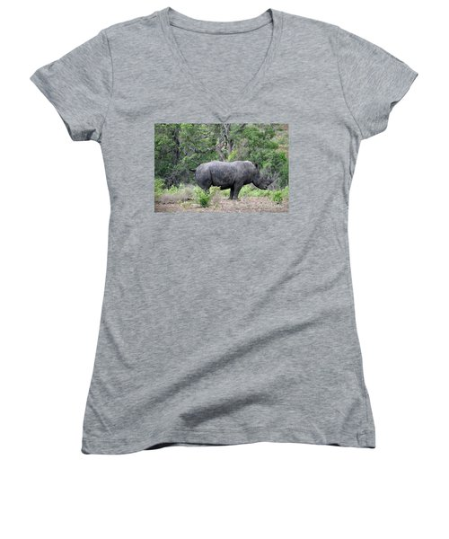 African Safari Naughty Rhino Women's V-Neck T-Shirt (Junior Cut)