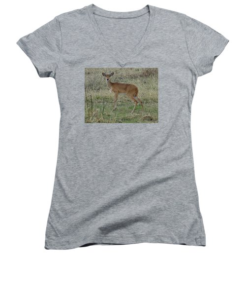 African Wildlife 1 Women's V-Neck (Athletic Fit)