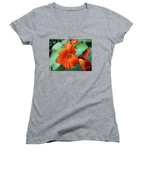 After Rain Women's V-Neck T-Shirt (Junior Cut) by Vesna Martinjak
