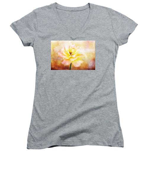 After The Rain Women's V-Neck T-Shirt (Junior Cut) by Joan Bertucci