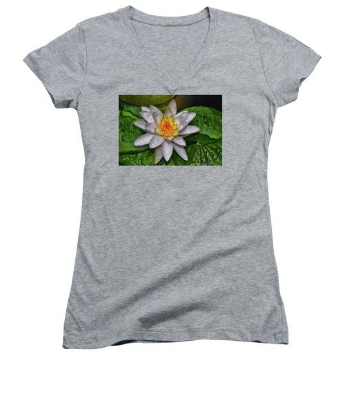 Women's V-Neck T-Shirt (Junior Cut) featuring the photograph After The Rain - Water Lily 003 by George Bostian
