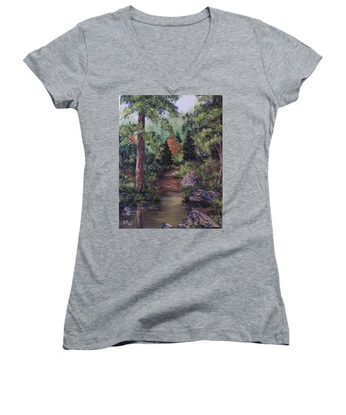After The Rains Women's V-Neck T-Shirt (Junior Cut) by Megan Walsh