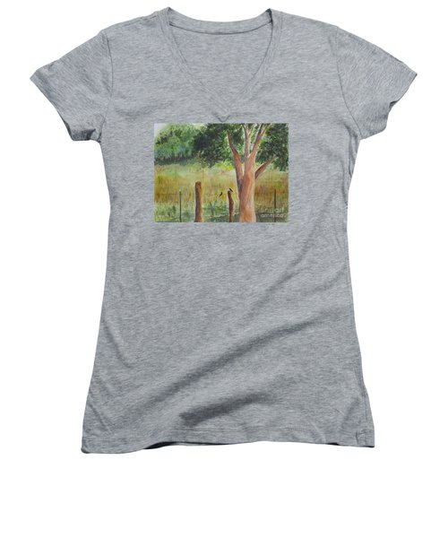Women's V-Neck T-Shirt (Junior Cut) featuring the painting Afternoon Chat by Vicki  Housel
