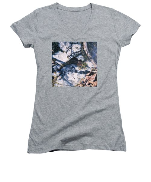 Afternoon Snack Women's V-Neck (Athletic Fit)