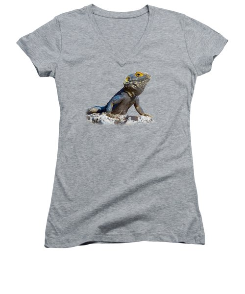 Agama Basking On A Rock T-shirt Women's V-Neck (Athletic Fit)