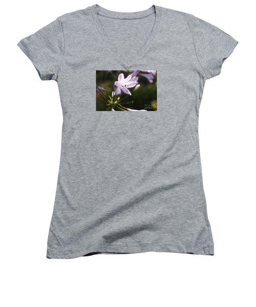 Agapanthus Women's V-Neck T-Shirt (Junior Cut) by Cassandra Buckley