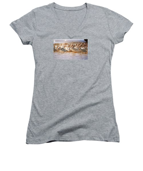 Aglow White Pelicans Women's V-Neck T-Shirt