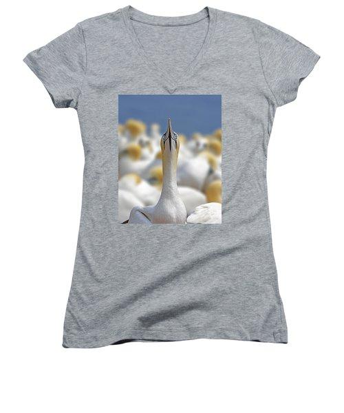 Ahead Women's V-Neck T-Shirt (Junior Cut) by Tony Beck