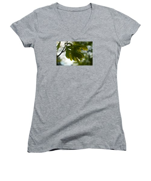 Air And Breeze Women's V-Neck T-Shirt