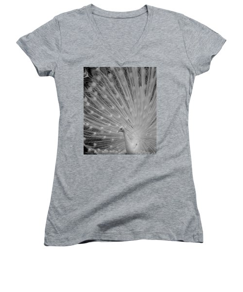 Albino Peacock In Black And White Women's V-Neck (Athletic Fit)
