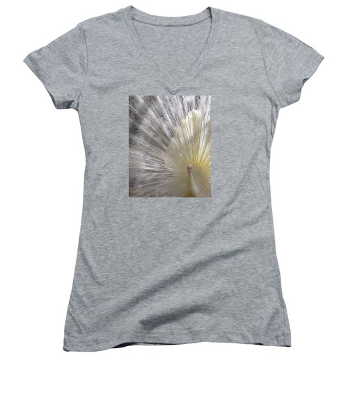 A Leucistic Peacock Women's V-Neck (Athletic Fit)