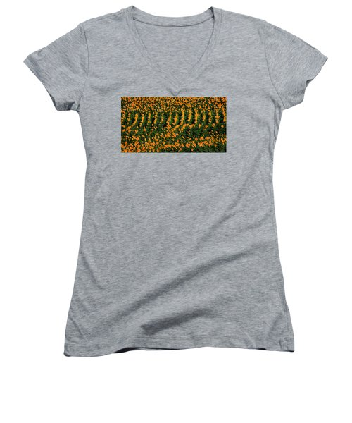 Women's V-Neck T-Shirt (Junior Cut) featuring the photograph All In A Row by Chris Berry