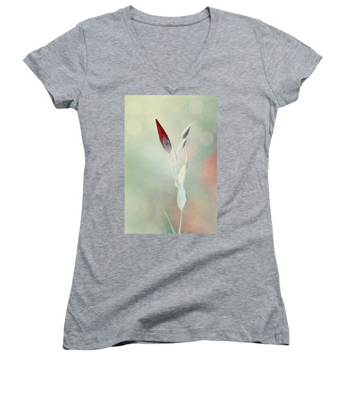 Alone In The Light Women's V-Neck T-Shirt