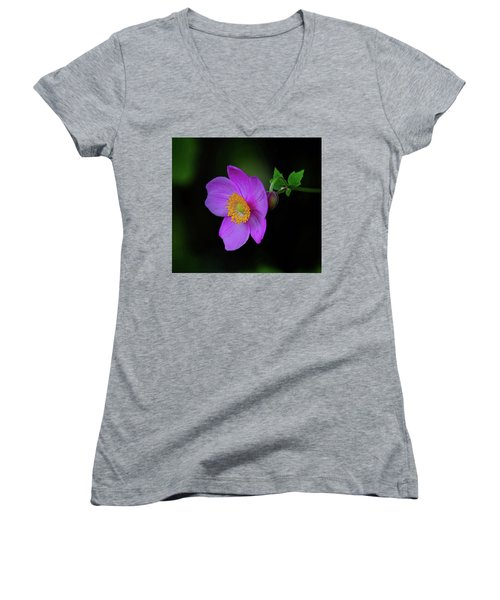 Anenome Purple Women's V-Neck (Athletic Fit)