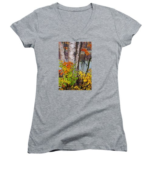 Along The Breezeway In Autumn 2014 Women's V-Neck (Athletic Fit)