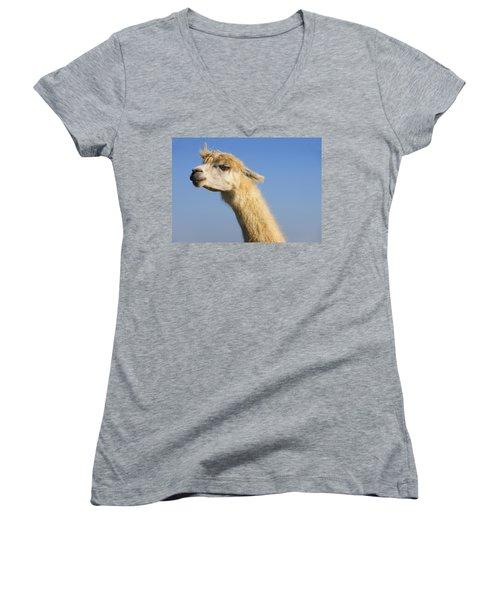Alpaca Women's V-Neck