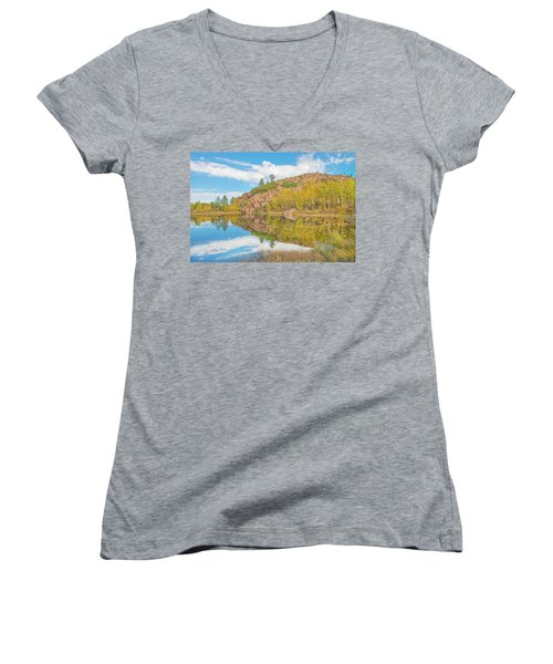 Alpine Vale Reflection  Women's V-Neck T-Shirt