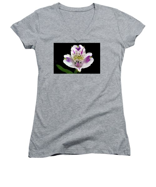 Alstroemeria Portrait. Women's V-Neck (Athletic Fit)