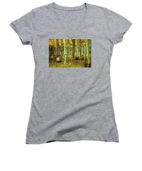 Women's V-Neck T-Shirt (Junior Cut) featuring the photograph Alvarado Autumn 1 by Marie Leslie