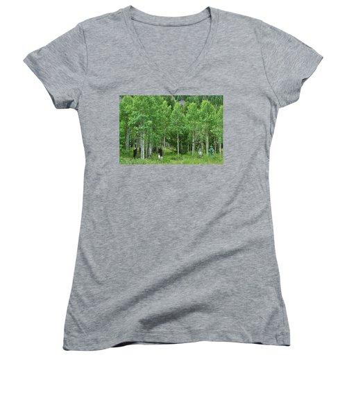 Alvarado Summer Women's V-Neck T-Shirt (Junior Cut) by Marie Leslie