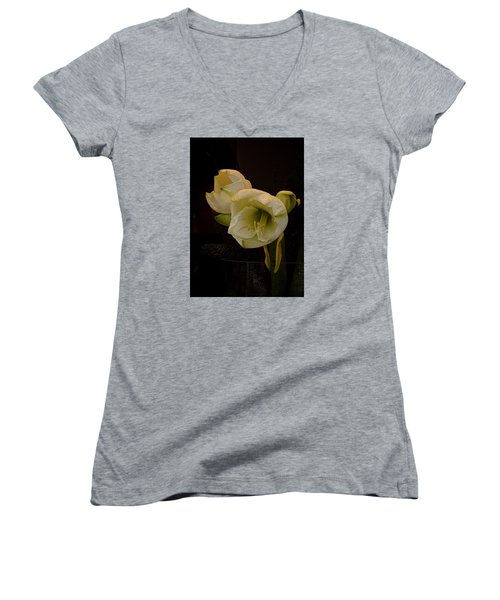 mont Blanc Amaryllis No. 1 Women's V-Neck T-Shirt (Junior Cut) by Richard Cummings